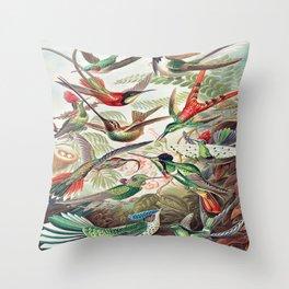 Vintage Audubon Poster Throw Pillow