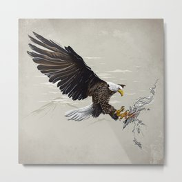 Air Fighter Metal Print