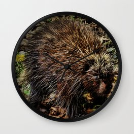 Quills of the Porcupine Wall Clock