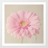 Summer Gerbera Art Print