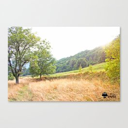 The yellow grass Canvas Print
