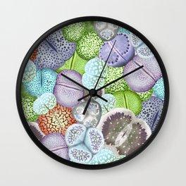 Lithop Garden Wall Clock