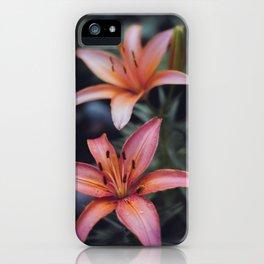 Backyard Flowers (4) iPhone Case