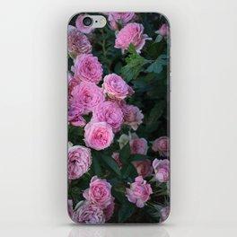 Vintage Pink Roses iPhone Skin