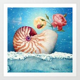 Fancy Nautilus Shell :: Fine Art Collage Art Print