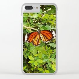 Common Tiger Clear iPhone Case