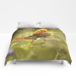 Morning impression with orange butterfly Comforters