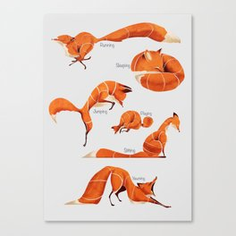 Fox poses Canvas Print