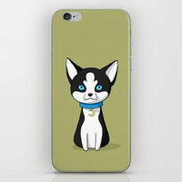 husky iPhone & iPod Skins featuring Husky by Freeminds