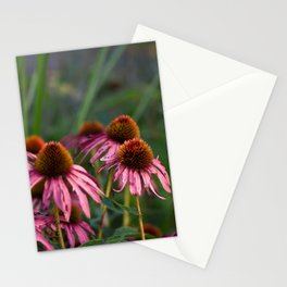 Tattered Stationery Cards