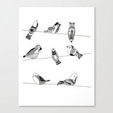 Polish birds Canvas Print