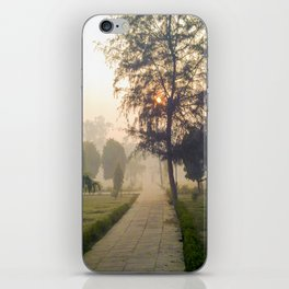 Pathway iPhone Skin