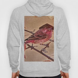 Birds In Armor 3 Hoody