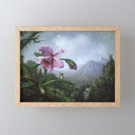 Hummingbird & Orchid Framed Mini Art Print