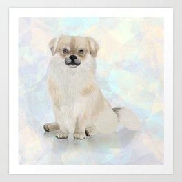 Tibetan Spaniel Dog Art Print