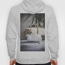 Tea set and spa settings on concrete background. Natural spa treatment and relaxation concept Hoody
