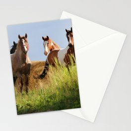 The Wild Bunch-Horses Stationery Cards