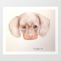 daschund Art Prints featuring Puppy by courtthewolf