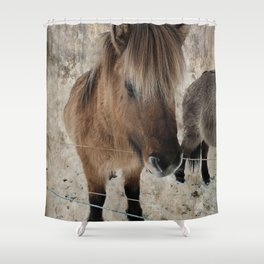 snowy Icelandic horse Shower Curtain