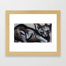Cat, lying animal Framed Art Print