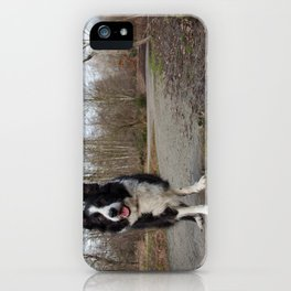Border Collie Loving Life  iPhone Case