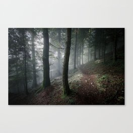 Me and my thoughts Canvas Print