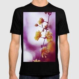 May. T-shirt