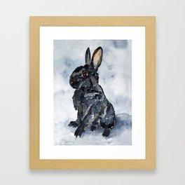 BUNNY#8 Framed Art Print