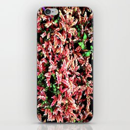 Harvest iPhone Skin