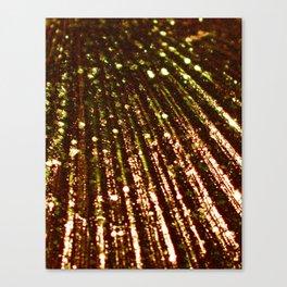 Triton´s Secret´s - Pirate´s Gold Canvas Print