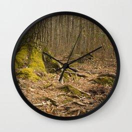 Mossy Woods - Ridge Hill Reserve Wall Clock