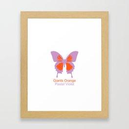 Ulysses Butterfly 4 Framed Art Print