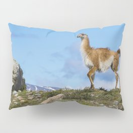 A Guanaco, in Patagonia, Chile. Pillow Sham