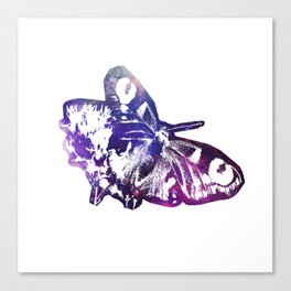 Galaxy butterfly Canvas Print