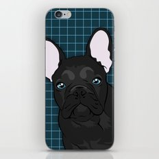 Black Frenchie iPhone & iPod Skin