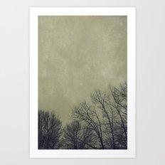 Barren Winter Art Print