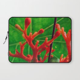 Coral Beauty Laptop Sleeve