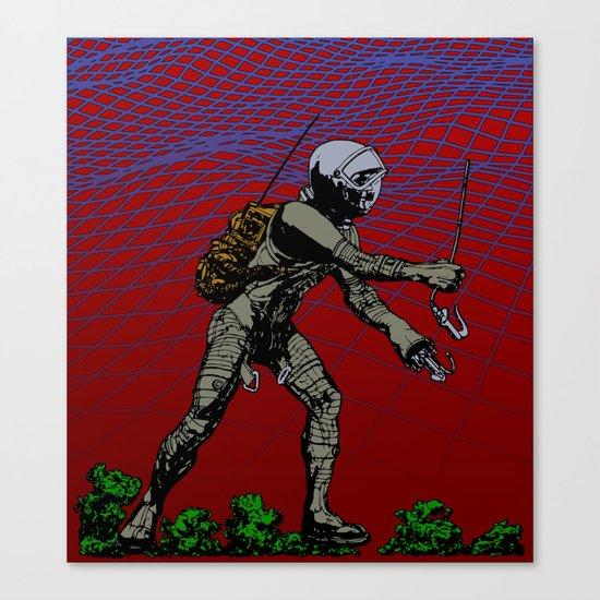 In Martian Fields Canvas Print