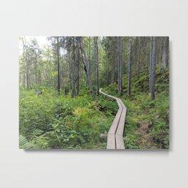Nuuksio National Park Trail - Espoo Finland Metal Print