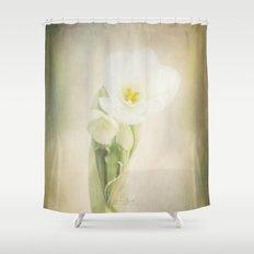 Dream a little dream Shower Curtain