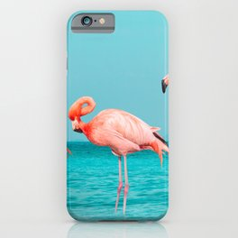 Flamingos standing in clear blue sea with sunny sky summer season with cloud iPhone Case