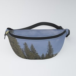 Carol M Highsmith - Winter Forest Fanny Pack