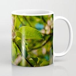 Apple Blossoms (1) Coffee Mug
