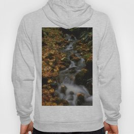 Forest Creek Amongst The Leaves Hoody