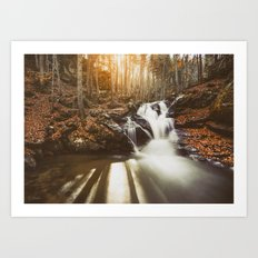 Autumn waterfall II Art Print