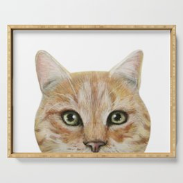 Golden British shorthair, America shorthair, cat, acrylic illustration by miart Serving Tray