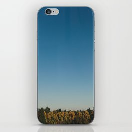 Pacific northwest trees iPhone Skin