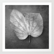 Art of Nature Art Print