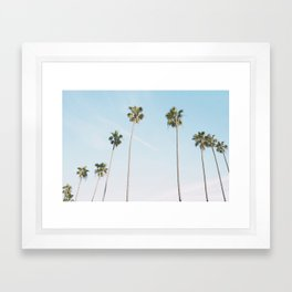 Beach Palms Framed Art Print