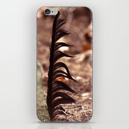 The feather / Die Feder iPhone Skin